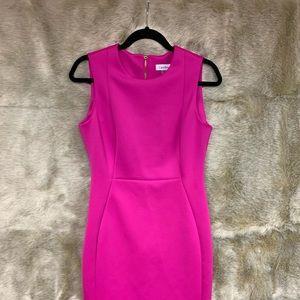 Calvin Klein hot pink dress, size 8, gold zipper